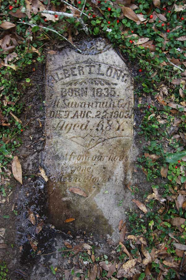 Albert Long Gravestone Photo