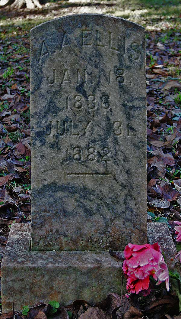 A.A. Ellis Gravestone Photo