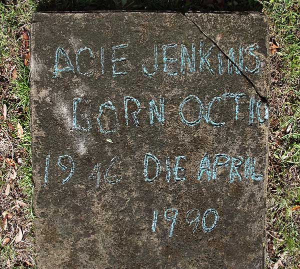 Acie Jenkins Gravestone Photo