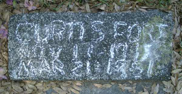 Curtis Fort Gravestone Photo