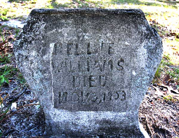 Nellie Williams Gravestone Photo