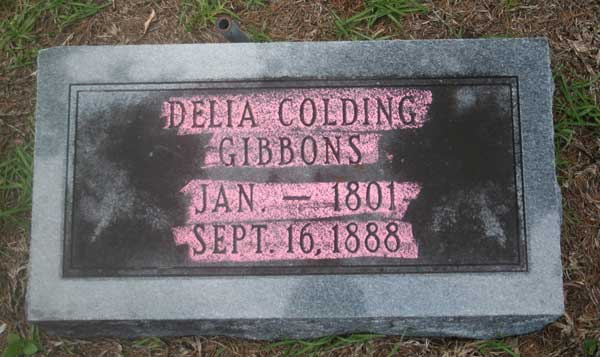 Delia Colding Gibbons Gravestone Photo