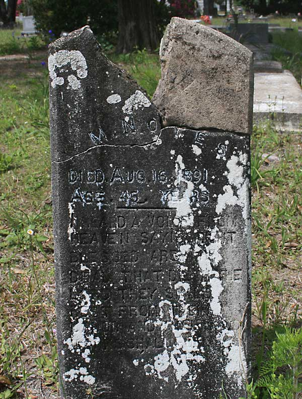 M. Noyes Gravestone Photo