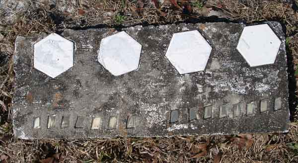 Amellia Williams Gravestone Photo
